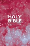 NIV Beacon Bible (Pack of 10)