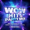 Various - Wow Hits Party Mix