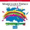 Mark Condon - Marvellous Things (Split Trax)