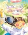 Susie Poole - The Amazing Journey