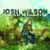 Josh Wilson - Trying To Fit The Ocean In A Cup