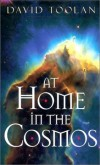 David Toolan - At Home in the Cosmos