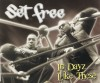 Set Free - In Dayz Like These